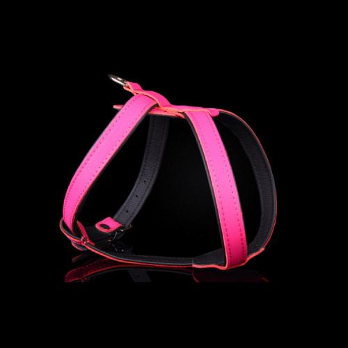 SUPER LEATHER HARNESS